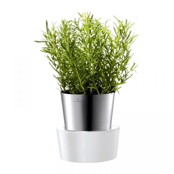 Doniczka na zioła Auerhahn Herbs 30012511