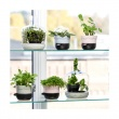 Doniczka na zioła Sagaform Herbs & Spices lawenda SF-5016664