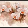 Fototapeta - Herbaciane orchidee A0-XXLNEW011178