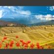 Fototapeta - Jesienny krajobraz A0-XXLNEW010201