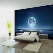 Fototapeta - Księżycowa noc A0-XXLNEW010826
