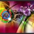 Fototapeta - Magiczne światło kolorów A0-XXLNEW011563