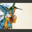 Fototapeta - Marvelous bird A0-F4TNT0526