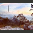 Fototapeta - mglisty  horyzont A0-F4TNT0069-P