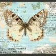 Fototapeta - Pocztówka z motylem A0-XXLNEW010217