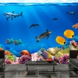 Fototapeta - Podwodne królestwo A0-XXLNEW010146
