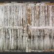 Fototapeta - Szepty drzwi A0-XXLNEW011495