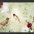 Fototapeta - Vintage birds A0-XXLNEW010163