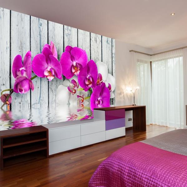 Fototapeta - Violet orchids with water reflexion (200x154 cm) A0-LFTNT0539