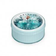 Kringle Candle - Blue Spruce - Świeczka zapachowa - Daylight (35g)