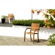 Krzesło z podłokietnikami Catalina DK-71306