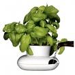 Mały wazon na zioła SF-5007162
