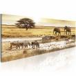 Obraz - Afryka: przy wodopoju A0-N3099