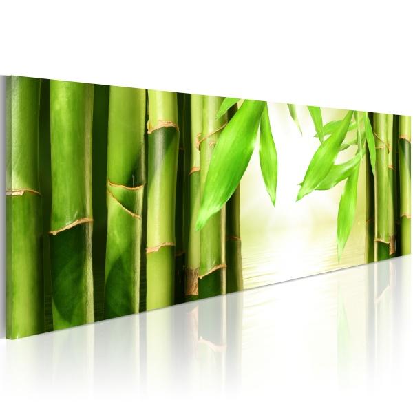 Obraz - Bamboo gate (120x40 cm) A0-N1206