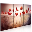 Obraz - Bright red poppies A0-N2613