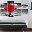 Obraz - Colour of love A0-N2948