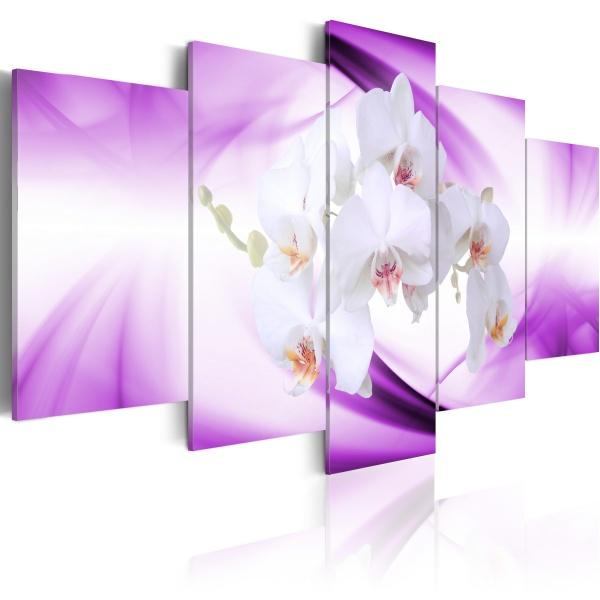 Obraz - Cudowna roślina - orchidea (100x50 cm) A0-N1332