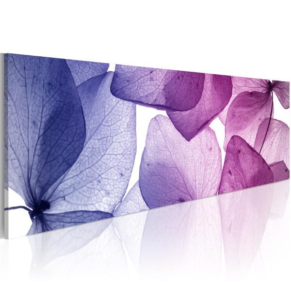 Obraz - Delicate petals (120x40 cm) A0-N1209