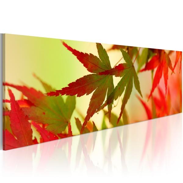 Obraz - Dotyk jesieni (120x40 cm) A0-N1239