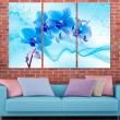Obraz - Eteryczna orchidea - błękit A0-N2978