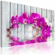 Obraz - harmonia: orchidea A0-N2243