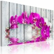 Obraz - harmonia: orchidea - tryptyk A0-N2250