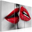 Obraz - Hot lips A0-N2804