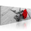 Obraz - Karminowa róża A0-N3374