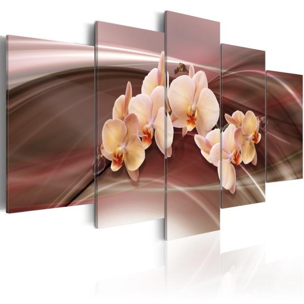 Obraz - Kwiaty orchidei na falującym tle (100x50 cm) A0-N1339