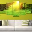 Obraz - Las i słońce A0-N3364