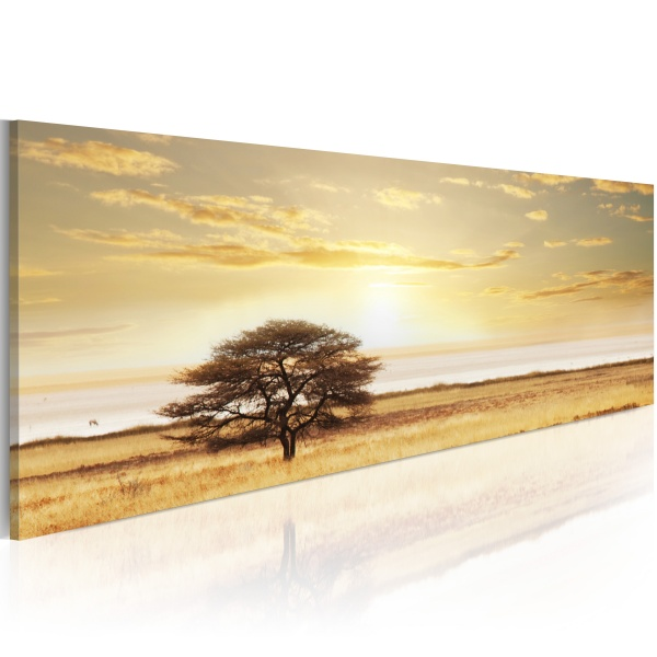 Obraz - Lonely tree on savannah (120x40 cm) A0-N1226