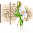 Obraz - Orchidee, babmbus i zen A0-N3136