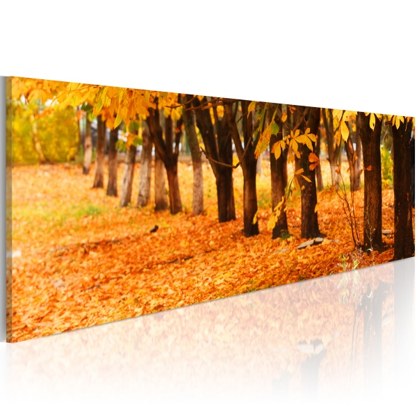 Obraz - Park covered with golden leaves (120x40 cm) A0-N1225