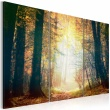 Obraz - Piękno jesieni - tryptyk A0-N2521