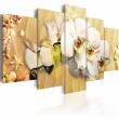 Obraz - Plaża i orchidea A0-N2305