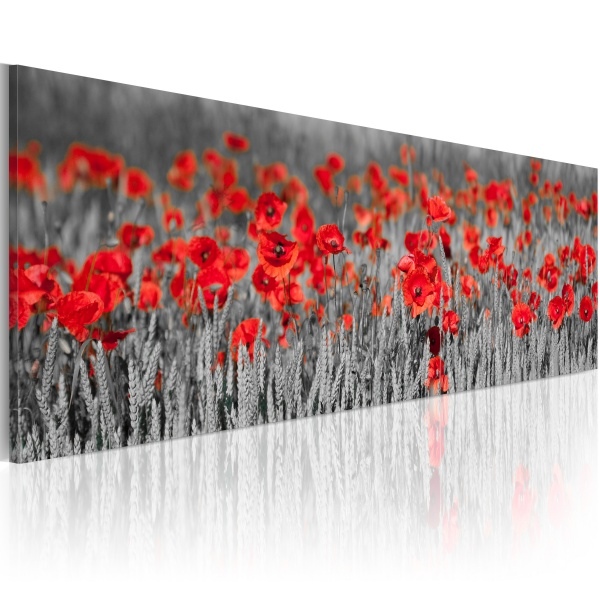 Obraz - Poppies among fields of wheat (120x40 cm) A0-N1245