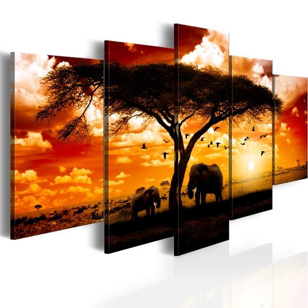 Obraz - Ptaki nad sawanną (100x50 cm) A0-1008