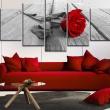 Obraz - Róża na drewnie A0-N3363