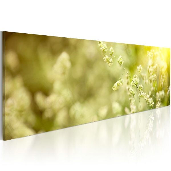 Obraz - Sielanka (120x40 cm) A0-N1235