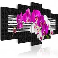 Obraz - Skromne orchidee (100x50 cm)