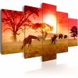 Obraz - Słoneczne kolory Afryki A0-N3111