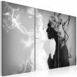 Obraz - Smoky kiss A0-N2911