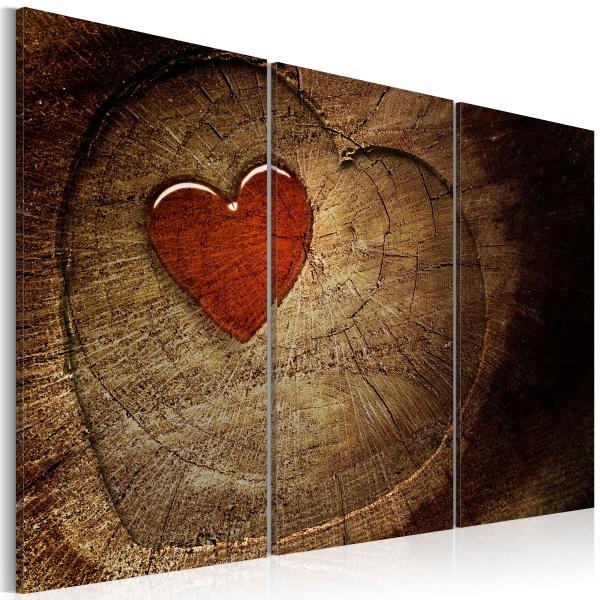 Obraz - Stara miłość nie rdzewieje - 3 części (60x40 cm) A0-N1320