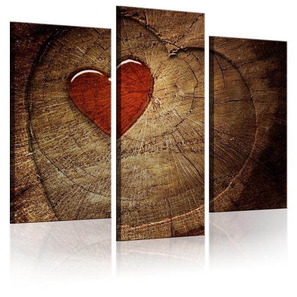 Obraz - Stara miłość nie rdzewieje - tryptyk (60x50 cm) A0-N1321