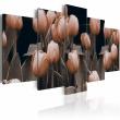 Obraz - Tulipany w sepii A0-N2378