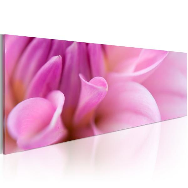 Obraz - Urzekająca dalia (120x40 cm) A0-N1251