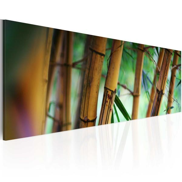 Obraz - Wild bamboos (120x40 cm) A0-N1246