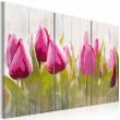 Obraz - Wiosenny bukiet tulipanów A0-N3091