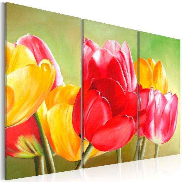 Obraz - Znów zakwitły tulipany... (60x40 cm) A0-N1085