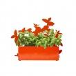 Osłonka do ziół Sagaform Kitchen pomarańczowa SF-5016474